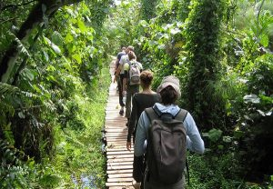 Nature walk in Pian Nature walk in Pian Upe wildlife reserveUpe wildlife reserve