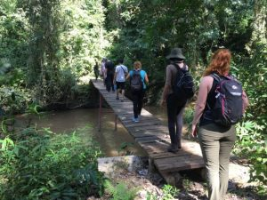 Nature Walks in Kibale National Park