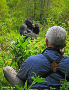 5 Days Uganda gorilla and adventure safari