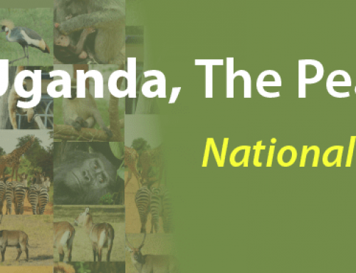 Rules that govern Uganda National Games Parks – Uganda Safari News