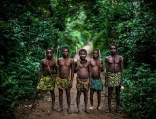 1 Day Semuliki Cultural Safari Uganda Tour / 1 Day Uganda Cultural Safari in Semuliki National Park- Uganda Safari News
